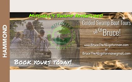 Mitchell's Swamp Adventures