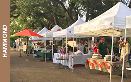 Hammond Farmers Market