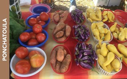 Ponchatoula Farmers Market